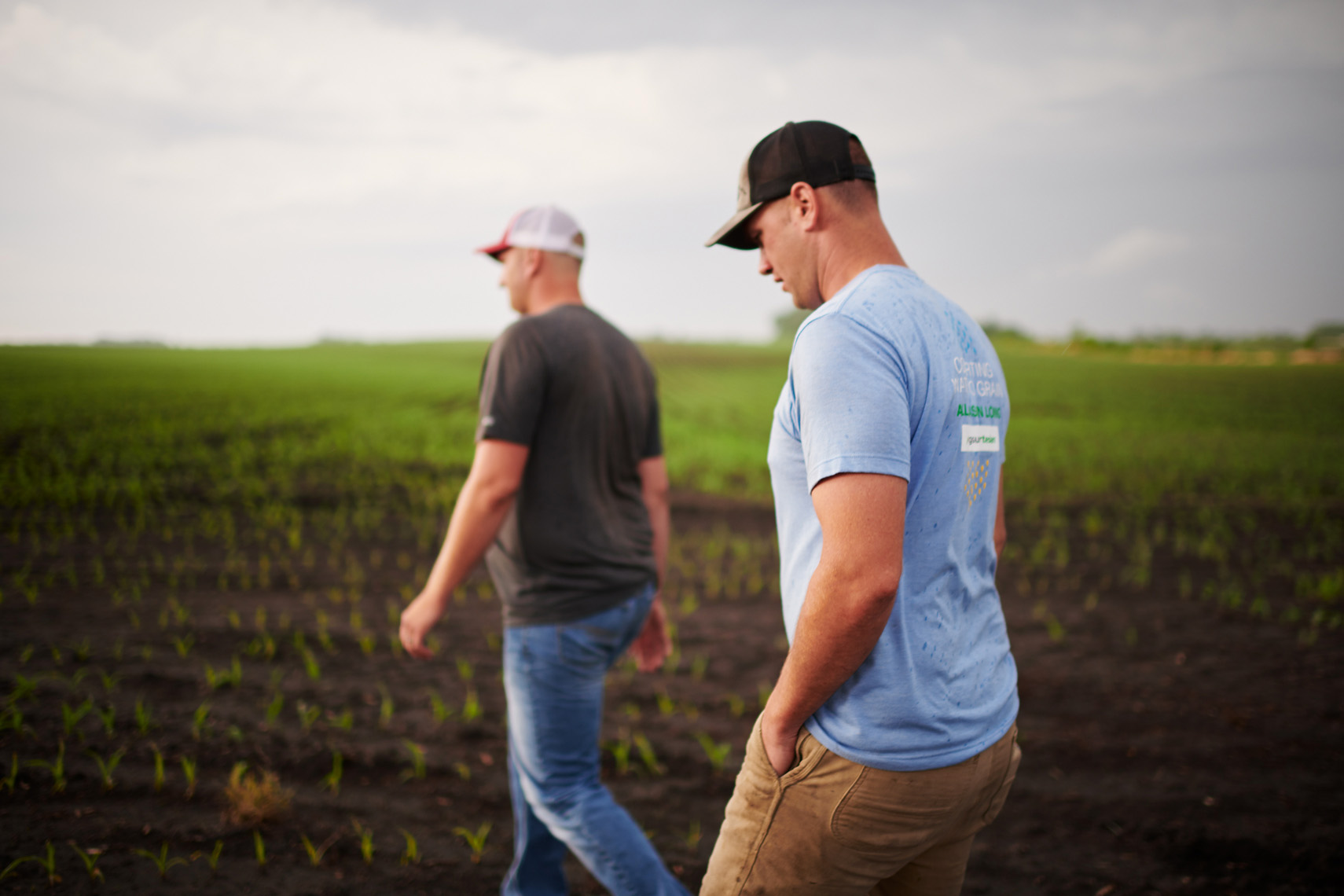 Farmers inspecting early corn field lifestyle